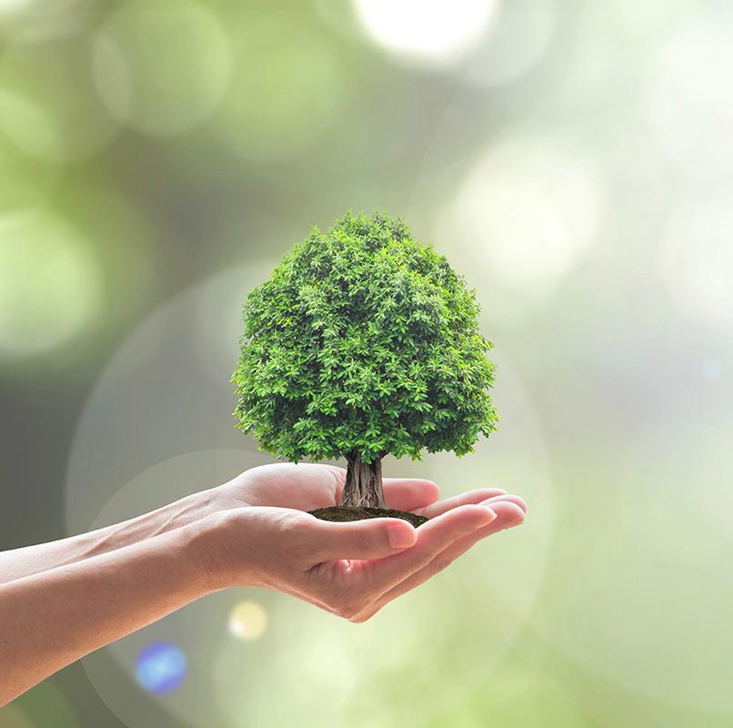 Abitare la Terra, le proposte di Fondazione Cogeme Onlus